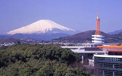东海大学(日本)1